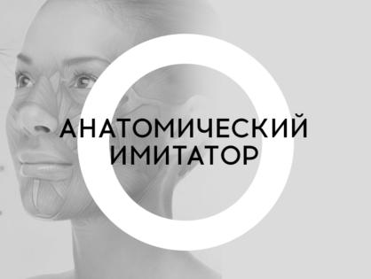 Практический кадавер-курс «Анатомический имитатор»