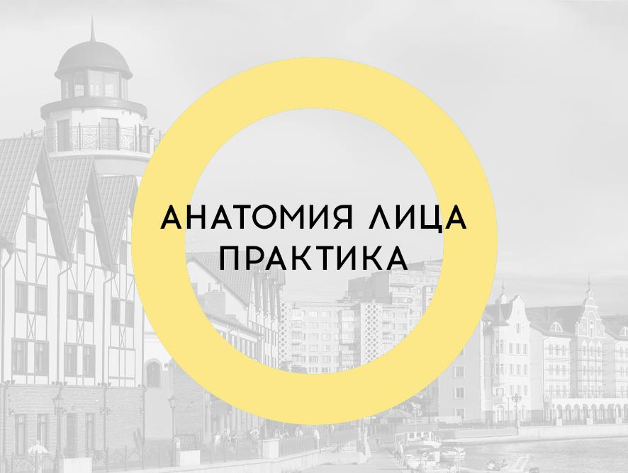 Диссекционные курсы в Калининграде