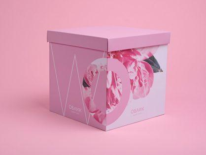 Super Box от «Облик» — делимся вдохновением